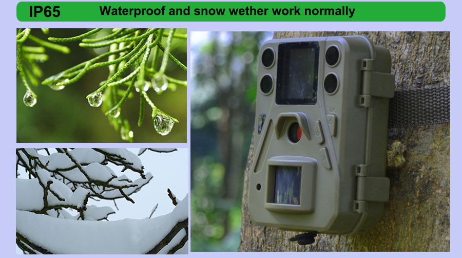 IP65 waterproof